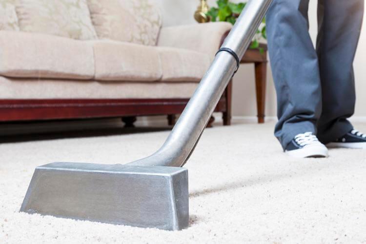 Limpieza de alfombra gallery of para el caso de los - Limpieza casera de alfombras ...