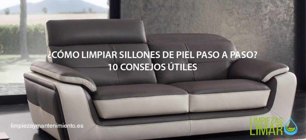 C mo limpiar sillones de piel 10 consejos de nuestros for Como limpiar asientos de cuero