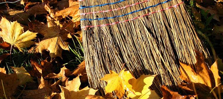servicio-de-limpieza-de-jardines-en-Madrid